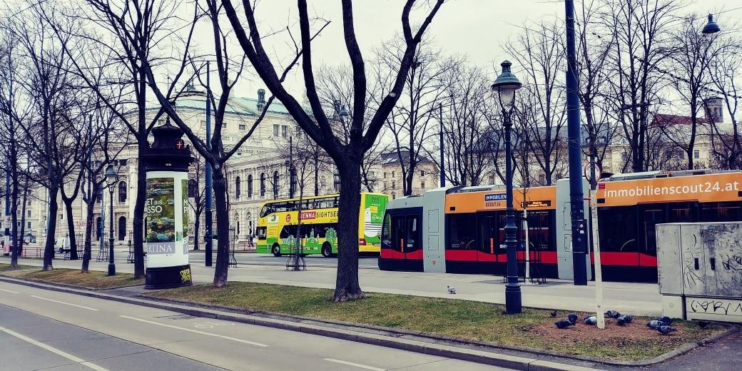 praktyka dziennikarska w Wiedniu