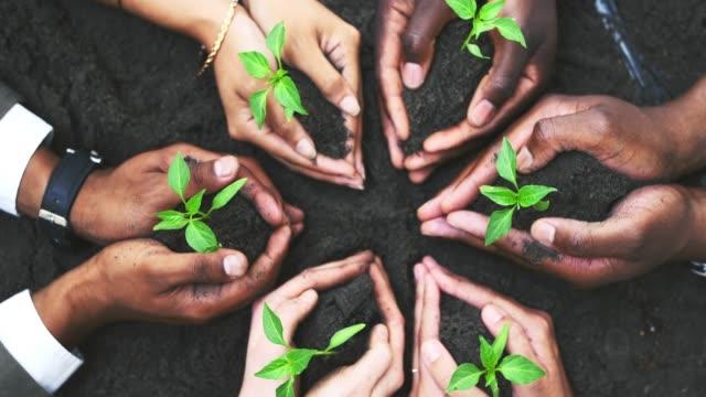 Nachhaltigkeit: Mit Kleinem Großes bewirkenNachhaltigkeit: Mit Kleinem Großes bewirken