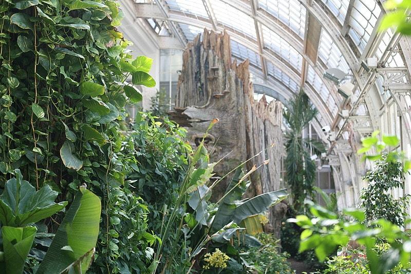 Ausflugstipp: Schmetterlingshaus in WienAusflugstipp: Schmetterlingshaus in Wien
